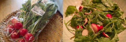 radish salad pano
